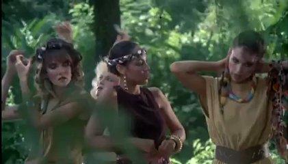 Les guerriers de la jungle